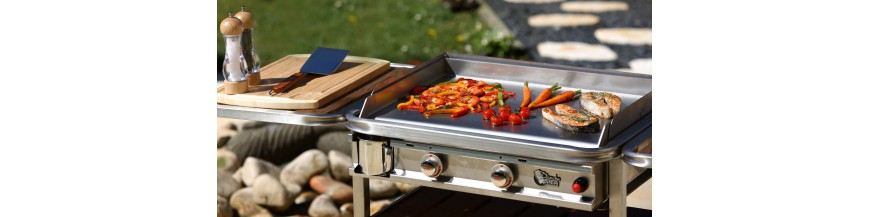 Barbecues and Planchas